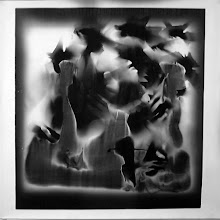 Photo: © Olivier Perrot Photogramme photogram photograms rayogram1999 Portrait 1000x1000mm Papier baryte Ref : Portrait-03