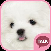 하얀 강아지 (마르티스) 카톡 테마 pink ver