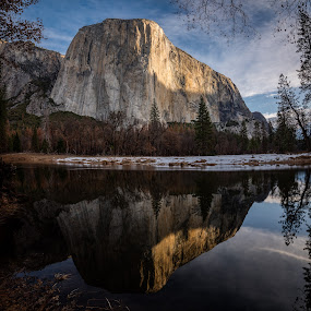 El Capitan Morning Reflection by Sandra Woods - Landscapes Mountains & Hills ( reflection, national park, yosemite, el capitan, merced river, morning,  )