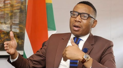Former Deputy Minister of Higher Education and Training' Mduduzi Manana. Picture: TIMESLIVE