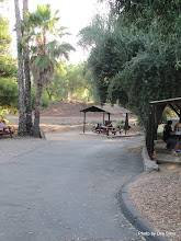 Photo: (Year 3) Day 33 -  The Rancho Los Coches RV Park #5