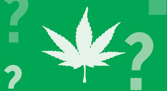 California Weed - WTF?