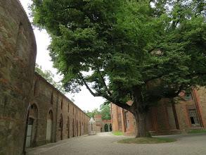 Photo: G7127853 Kamieniec Zabkowicki - Zamek i kompleks parkowy
