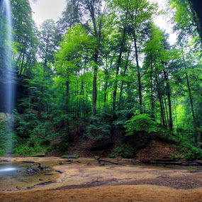 May Morning at Ash Cave by Jim Crotty - Landscapes Forests ( calm, may, flora, fauna, jim crotty, lush, waterfall, hocking hills, beauty, landscape, ohio photographer, spring, photography, tranquil, mystical, nature, serene, woodland, ash cave )