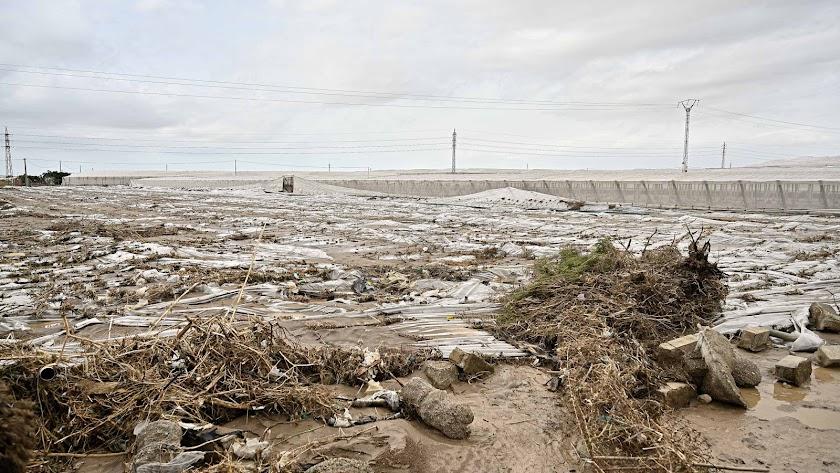 Una cantidad de invernaderos de San Isidro en Níjar quedaron tirados en el suelo.
