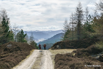 Photo: Dee Valley from above Altdourie, Invercauld Estate