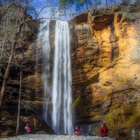 Toccoa Falls by Teresa Solesbee - Nature Up Close Water ( falls, nature, water fall )
