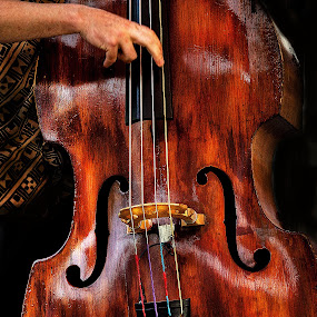 The cello by Irene Orloff - Artistic Objects Other Objects ( cello bass music )