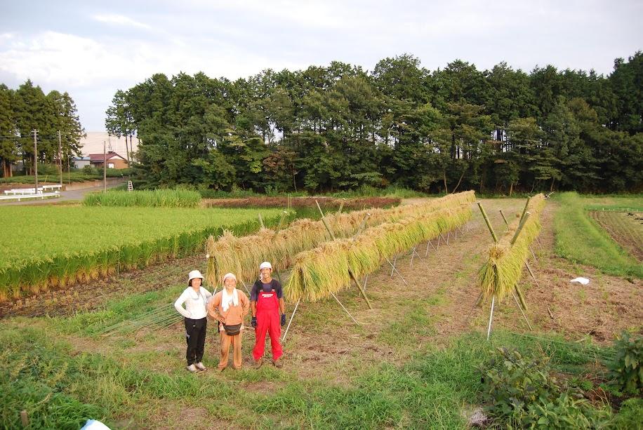 最後まで残っていた戸田さんとGさんとできあがった稲架でパシャリ!