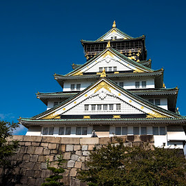 Castle in Osaka by Pravine Chester - Buildings & Architecture Public & Historical ( building, japan, osaka, castle, historical, architecture, historical building,  )