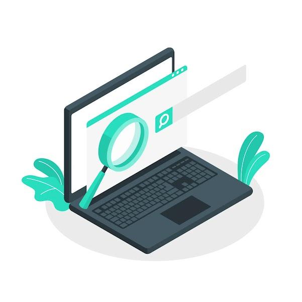 Search Engine Optimization : basic guide