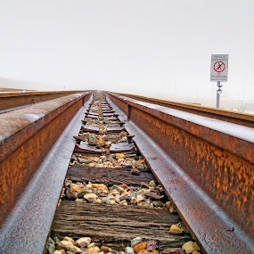 Lying on the Tracks by Kirk Barnes - Transportation Railway Tracks ( foggy, close-up, railroad, train tracks, tracks )