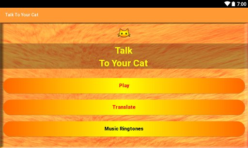 Talk To Your Cat 3.0 DreamHackers 5