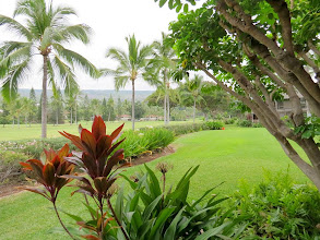 Photo: Howard and Laurel's rented condo overlooked the 11th hole at Kona Country Club.