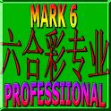 MARK 6 Professional 六合彩 icon
