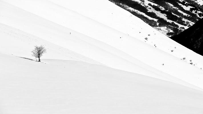 Alone in the snow di Simona Ranieri