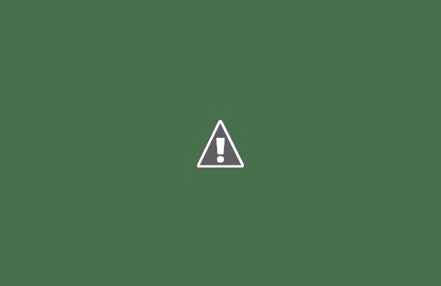 Шопинг, магазины и покупки в США