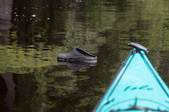 Photo: the only croc we saw all weekend