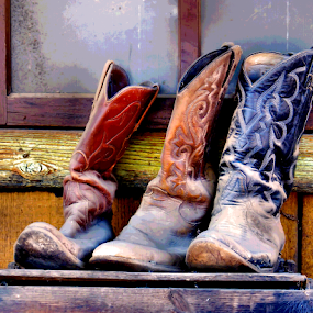 Cowboy boots by Roxana McRoberts - Artistic Objects Clothing & Accessories