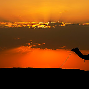 by Dola Das - Landscapes Travel ( , silhouette )