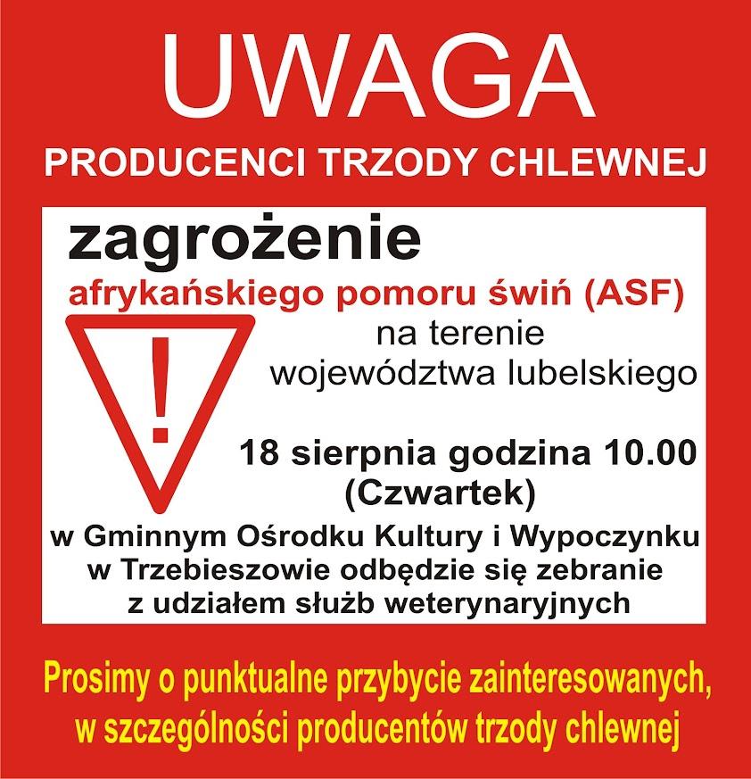 Zagrożenie afrykańckim pomorem świń w powiecie łukowskim