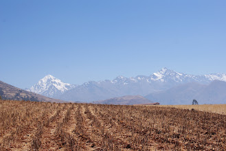 Photo: Lots of farming in the Andes region