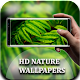 Download Nature Wallpaper HD For PC Windows and Mac