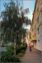 Photo: Str. Macilor, pe inserat - 2017.07.20