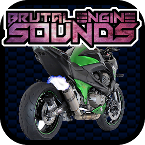 Engine sounds of Kawasaki Z800