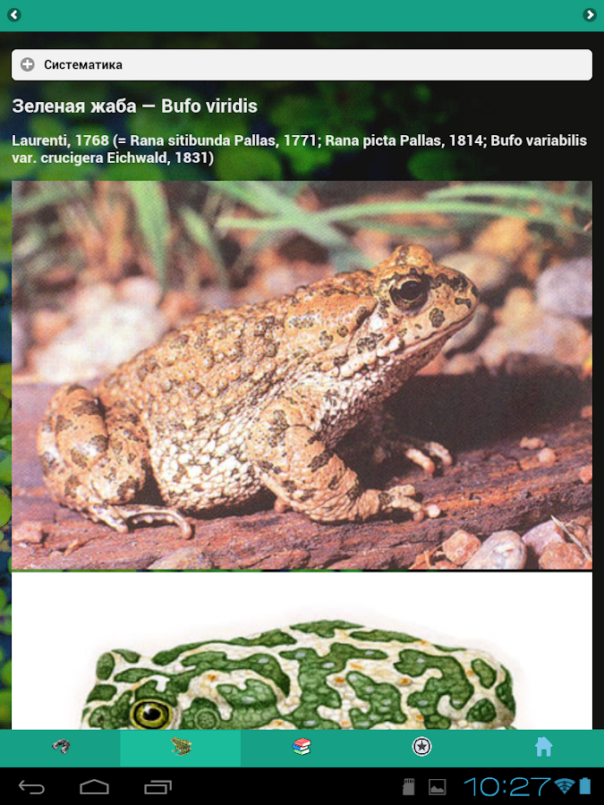 EcoGuide: Russian Amphibians- screenshot