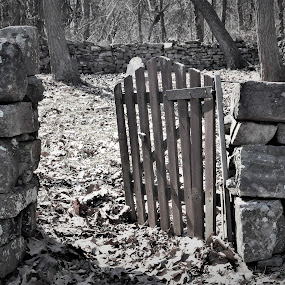 Gateway to the beyond by Brad Lehigh - Black & White Objects & Still Life (  )