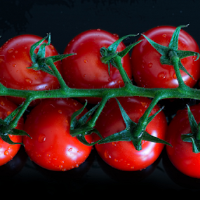 Tomatoes by Sam Song - Food & Drink Fruits & Vegetables ( vegan, green, vegetables,  )