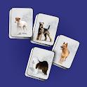 Dog Jongg Free icon