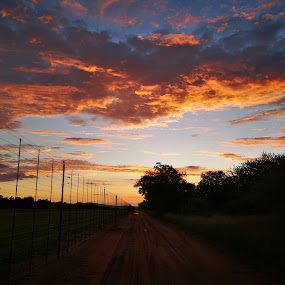 African Bushveld Sky by Lené Botha - Landscapes Cloud Formations