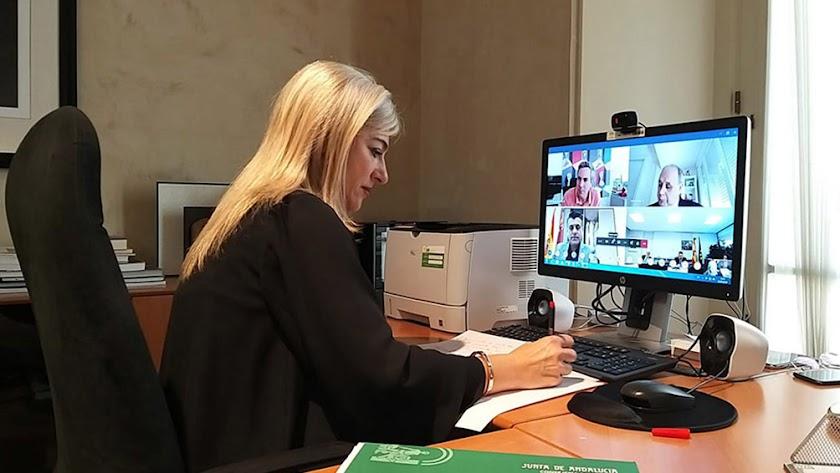 La consejera Patricia del Pozo, en la Conferencia Sectorial, celebrada telemáticamente.