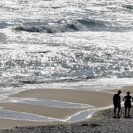 by Victoria Eversole - Landscapes Beaches ( gulf coast beaches, alabama coastline, late afternoon on the beach, orange beach )