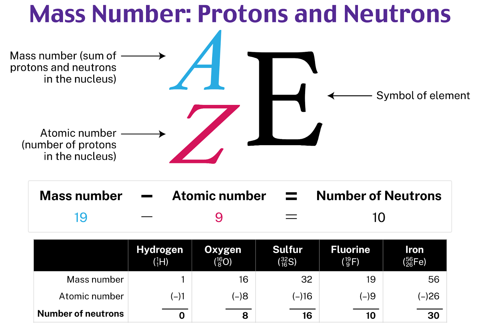 Mass Number Protons and Neutrons