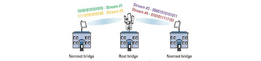 Figure 6. Point-to-multipoint (PtMP) bridge links