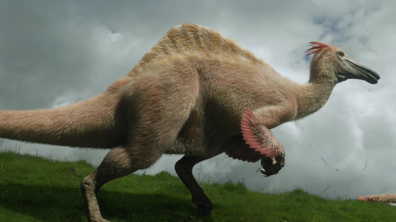 Watch Amazing Dinoworld live