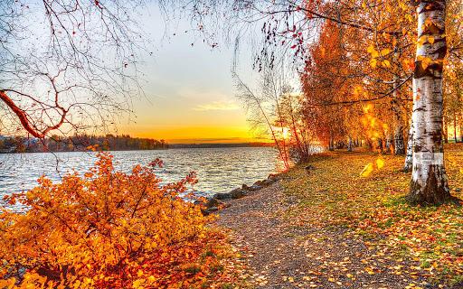 가을 배경 화면