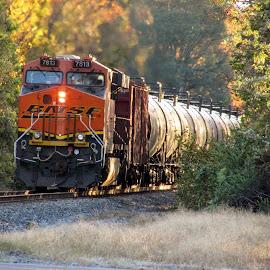 BNSF 7813 by Rick Covert - Transportation Trains ( railroad, locomotive, arkansas, railroad tracks, arkansas photographer, trains )