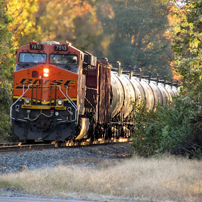 BNSF 7813 by Rick Covert - Transportation Trains ( railroad, locomotive, arkansas, railroad tracks, arkansas photographer, trains )