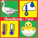 Инкубатор- гуси. Режим инкубирования, таблица. icon