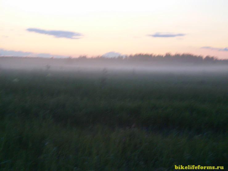 Туман в Завидово