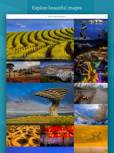 Screenshot 14 for Bing's Android app'