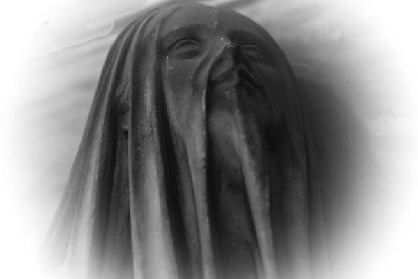 la donna col velo di paola_cattini