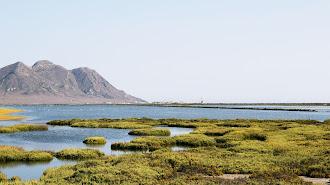 Las Salinas de Cabo de Gata, una de sus postales más características.