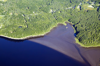 Photo: Southern Bald Cove entrance to the Penobscot River