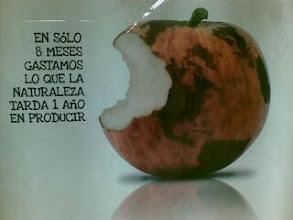 Photo: Por un consumo sostenible, piensa en la madre Tierra>