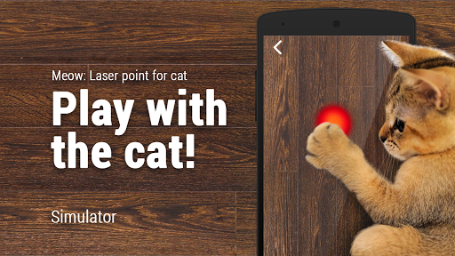 Meow: Laser point for cat